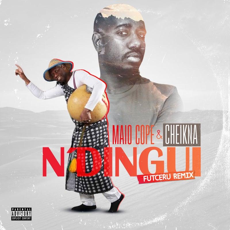 Ndingui (Cheikna Remix)