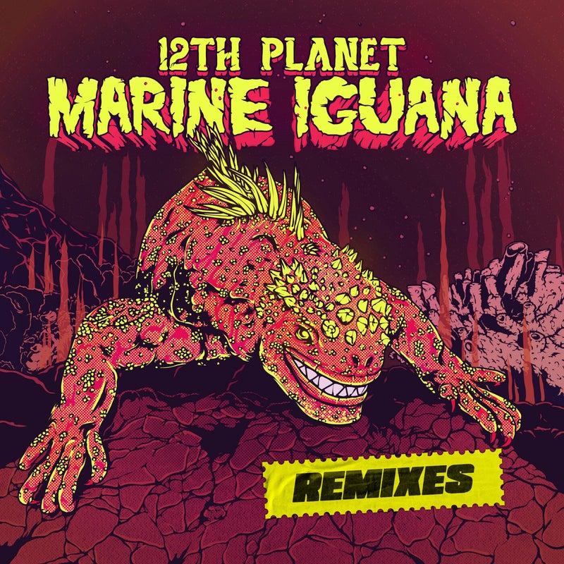 Marine Iguana: The Remixes