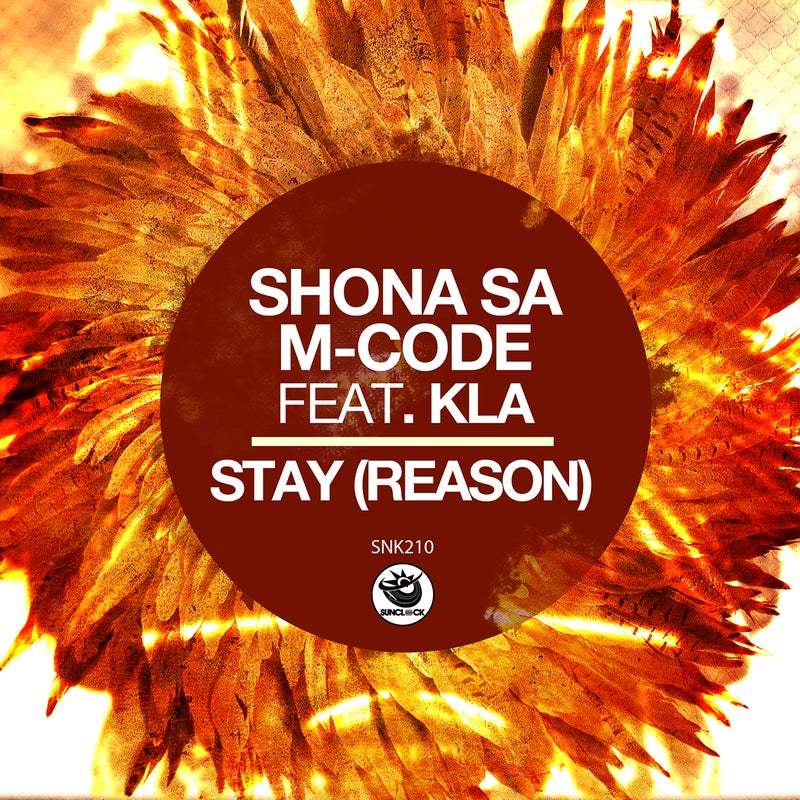 Stay (Reason)