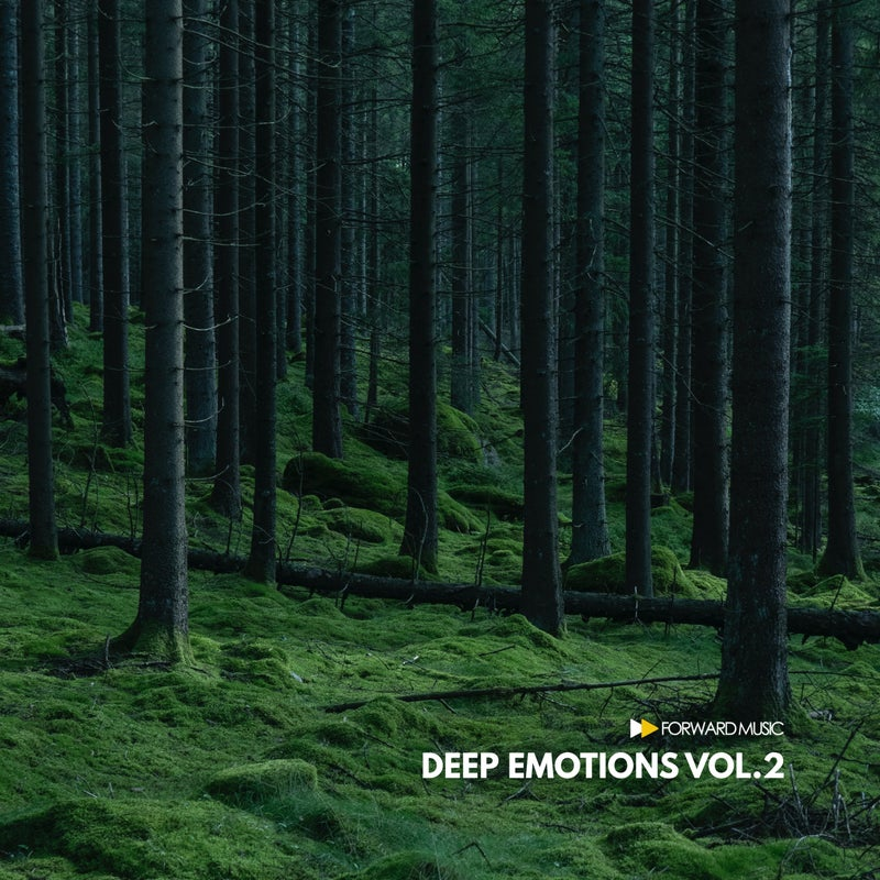 Deep Emotions, Vol. 2