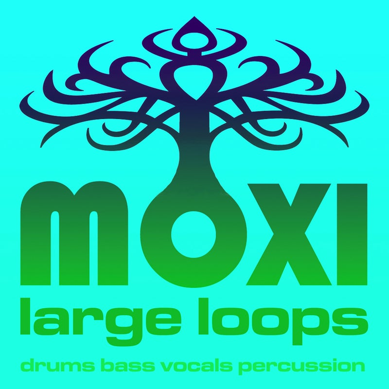 Vortex Loopy Loops Volume 13
