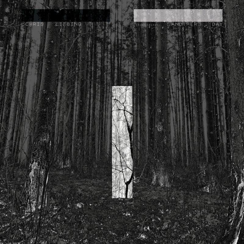Fault Line (feat. Miles Cooper Seaton)
