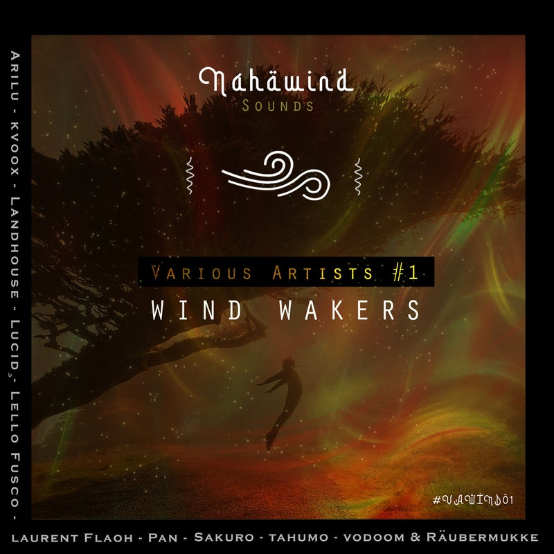 VAWIND01: WIND WAKERS