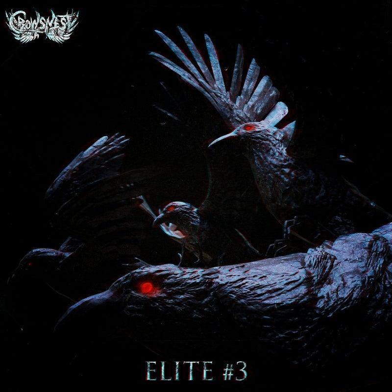 Crowsnest Elite #3