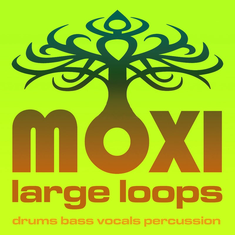 Moxi Large Loops Volume 11