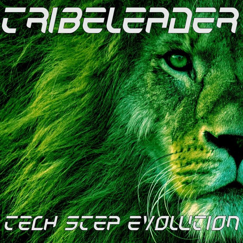 Tech Step Evolution