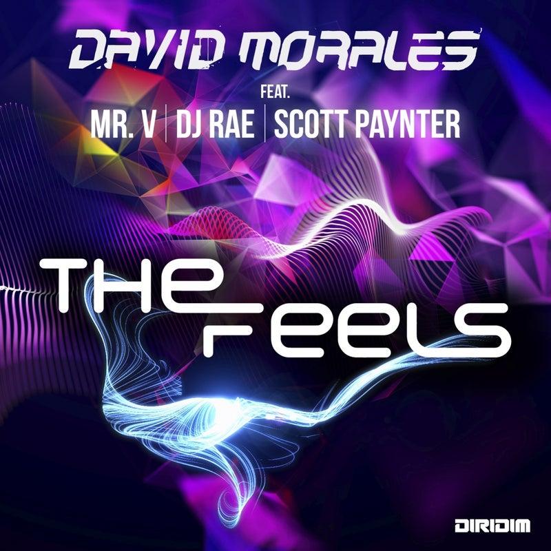 The Feels (feat. Mr. V, DJ Rae, Scott Paynter)