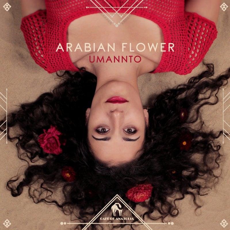 Arabian Flower
