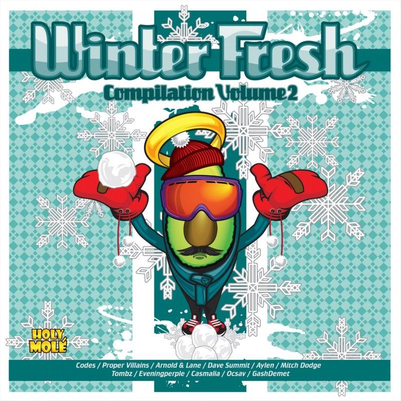 Winter Fresh Compilation Volume 2