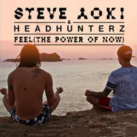Headhunterz & Steve Aoki - Feel (The Power Of Now) (Original Mix)