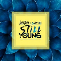 Wiltril & Aayio - Still Young (Original Mix)