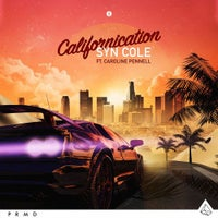 Syn Cole - Californication (feat. Caroline Pennell) (VIP Mix Extended)