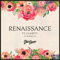 Steve James - Renaissance feat. Clairity (Myles Travitz Remix)