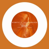 Bisbetic - Canyons feat. Jason Walker (Original Mix)