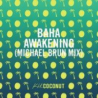 Baha - Awakening (Michael Brun Mix)