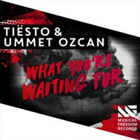 Tiesto & Ummet Ozcan - What You're Waiting For (Extended Mix)