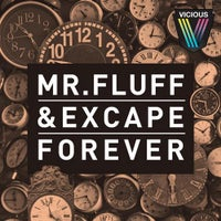 Excape - Forever (Mr. Fluff's Big Room Mix)